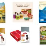 Best Dry Puppy Food : Top 10 rated, Free Grain, Organic